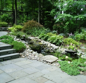 Bluestone Steps Pond Stream
