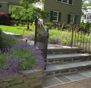 Front Entry Steps with Lavender