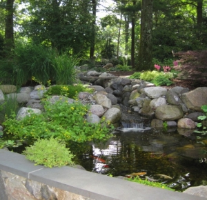 Pond and Garden in Summit