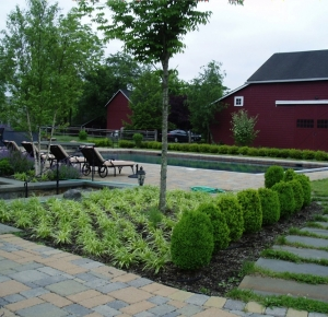 Poolhouse Planting Project