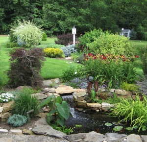 Sterling\'s Display Garden and Pond