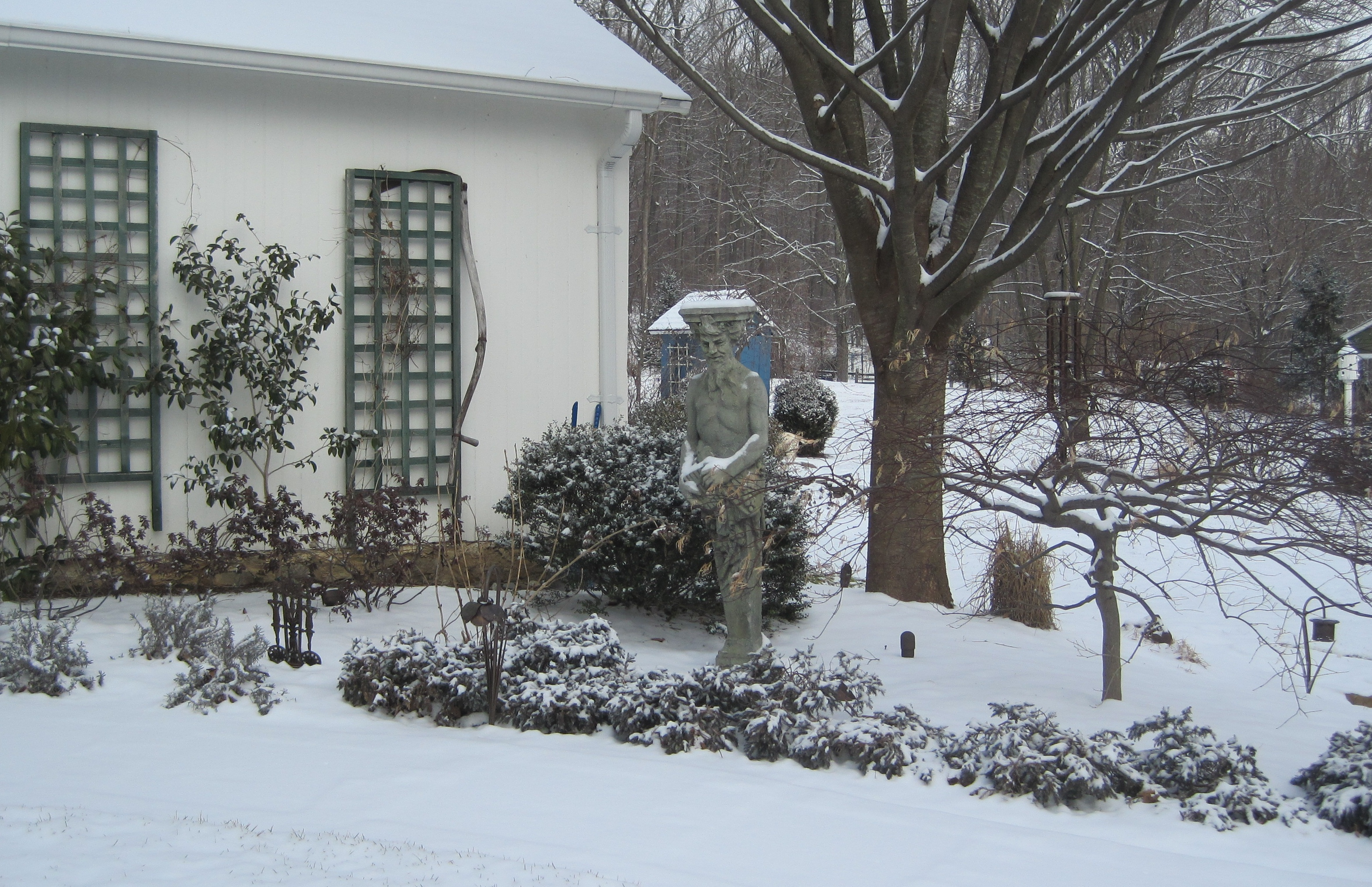 the garden in winter sterling horticultural services