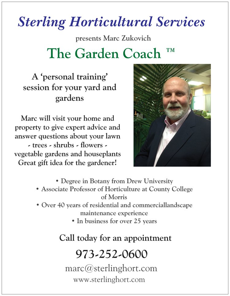 two-sided ad - garden coaching