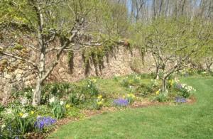 spring 2016 April 12 - 2 jpg